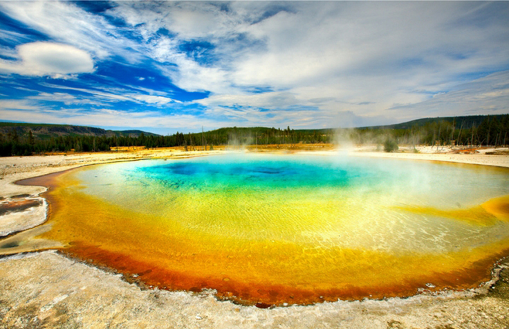 In Hot Water with Extremophiles