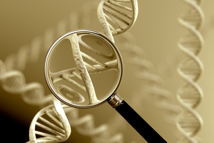 Targeted DNA Analysis
