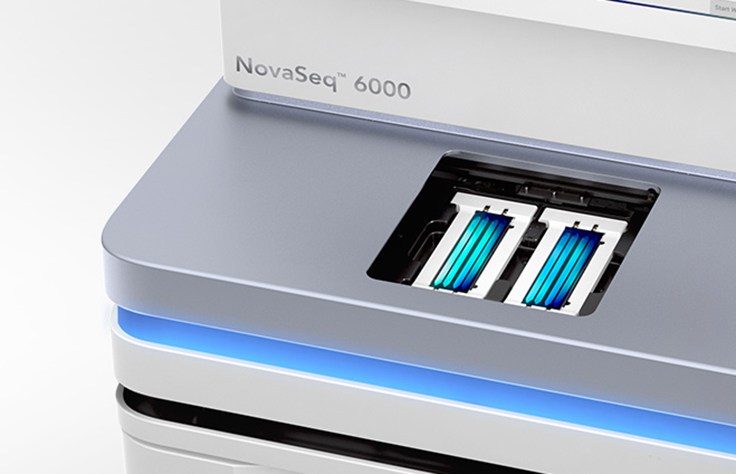 The NovaSeq 6000 System