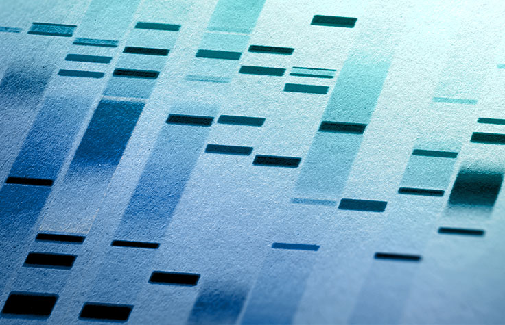 NGS vs. Sanger Sequencing